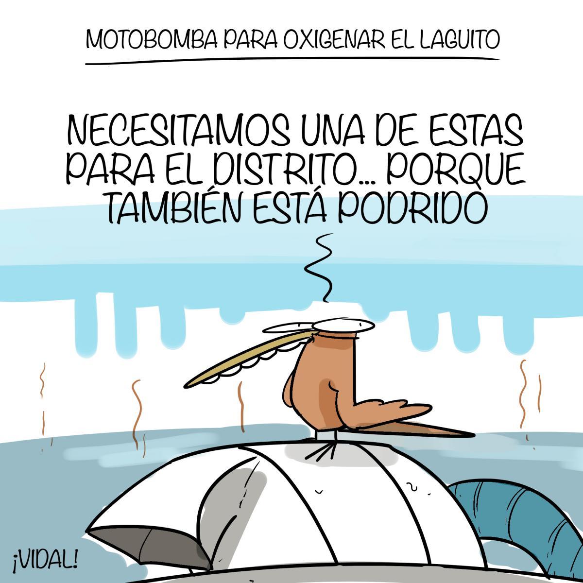 Caricatura 10 de septiembre de 2019