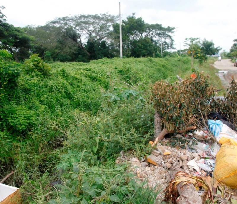 Quejas por limpieza de canal en Bicentenario | EL UNIVERSAL - Cartagena - El Universal - Colombia