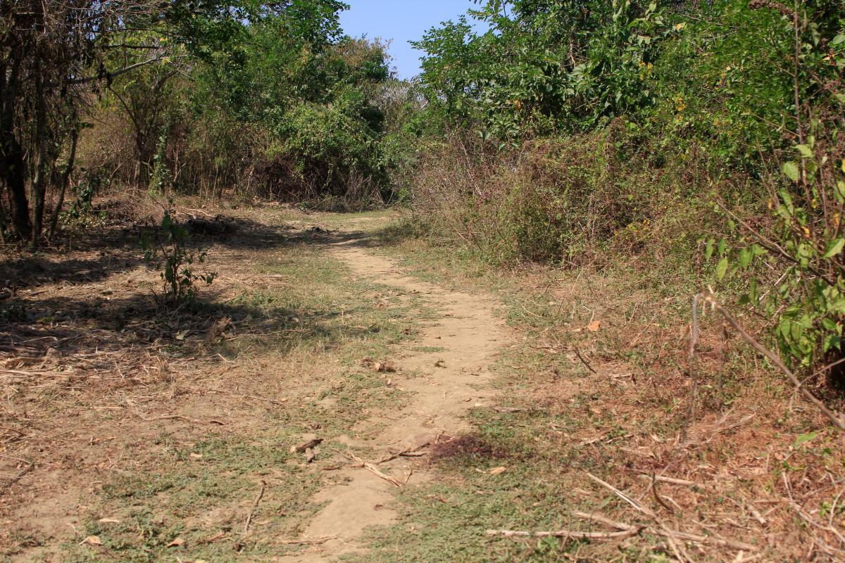 En esta zona en Sincerín, sector El Uno, hallaron el cuerpo de una mujer sin identificar.