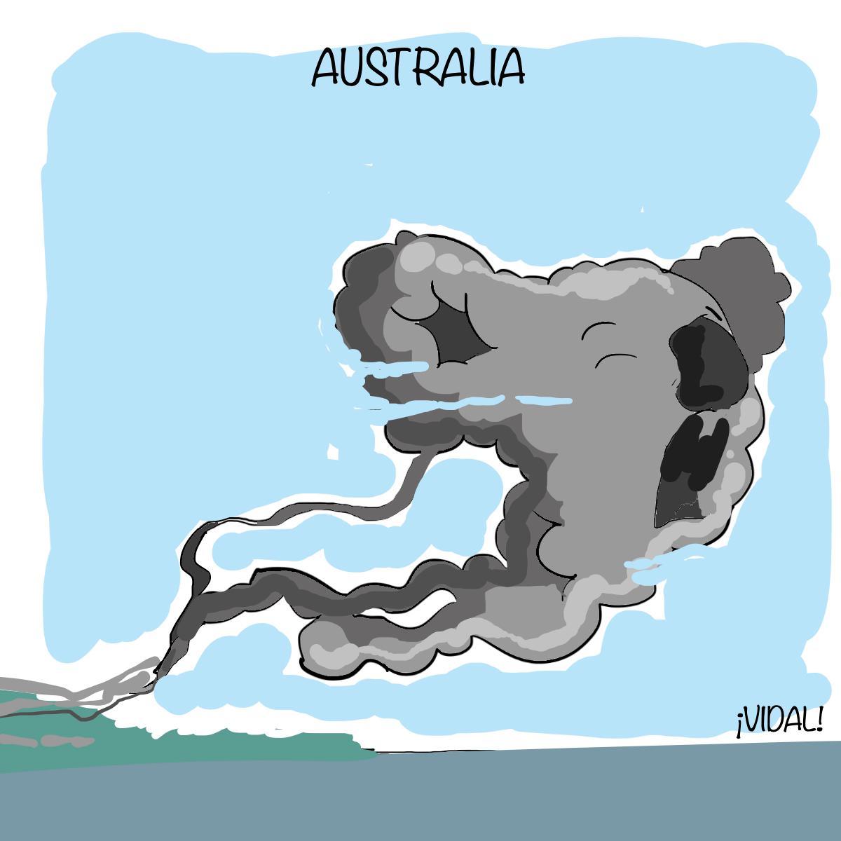 Caricatura 11 de enero de 2020