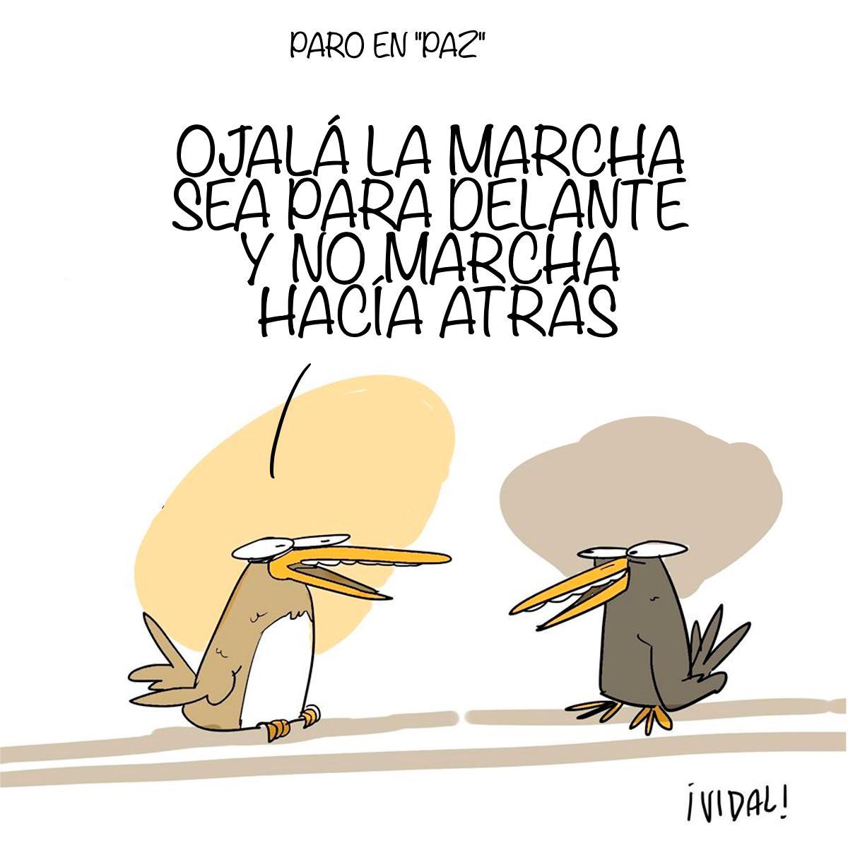 Caricatura 20 de noviembre de 2019