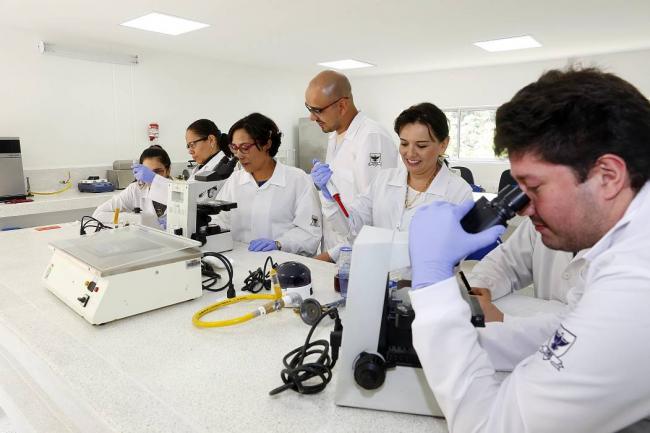 Cartagena: Ministerio de Ciencia será una realidad | EL UNIVERSAL