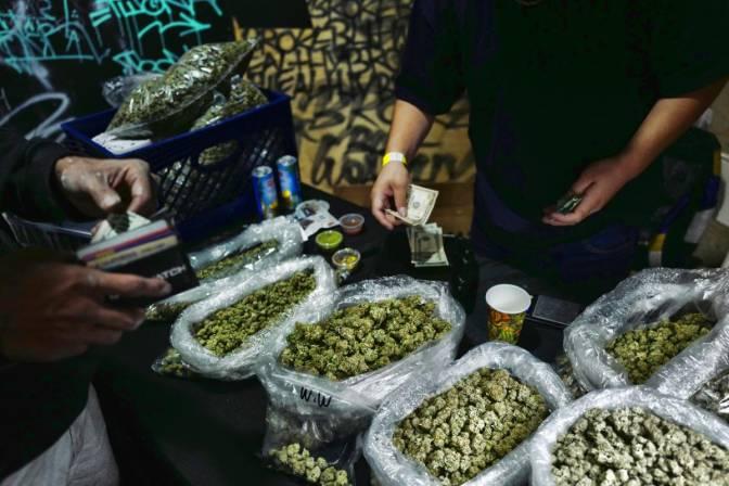 israel-en-la-vanguardia-del-cannabis-medicinal-sufre-escasez-de-marihuana