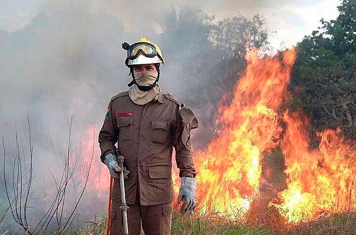 El norteño estado del Amazonas oficializó este domingo el pedido para que las Fuerzas Armadas de Brasil actúen en el combate de los incendios que golpean la región amazónica. EFE/ Bomberos Acre