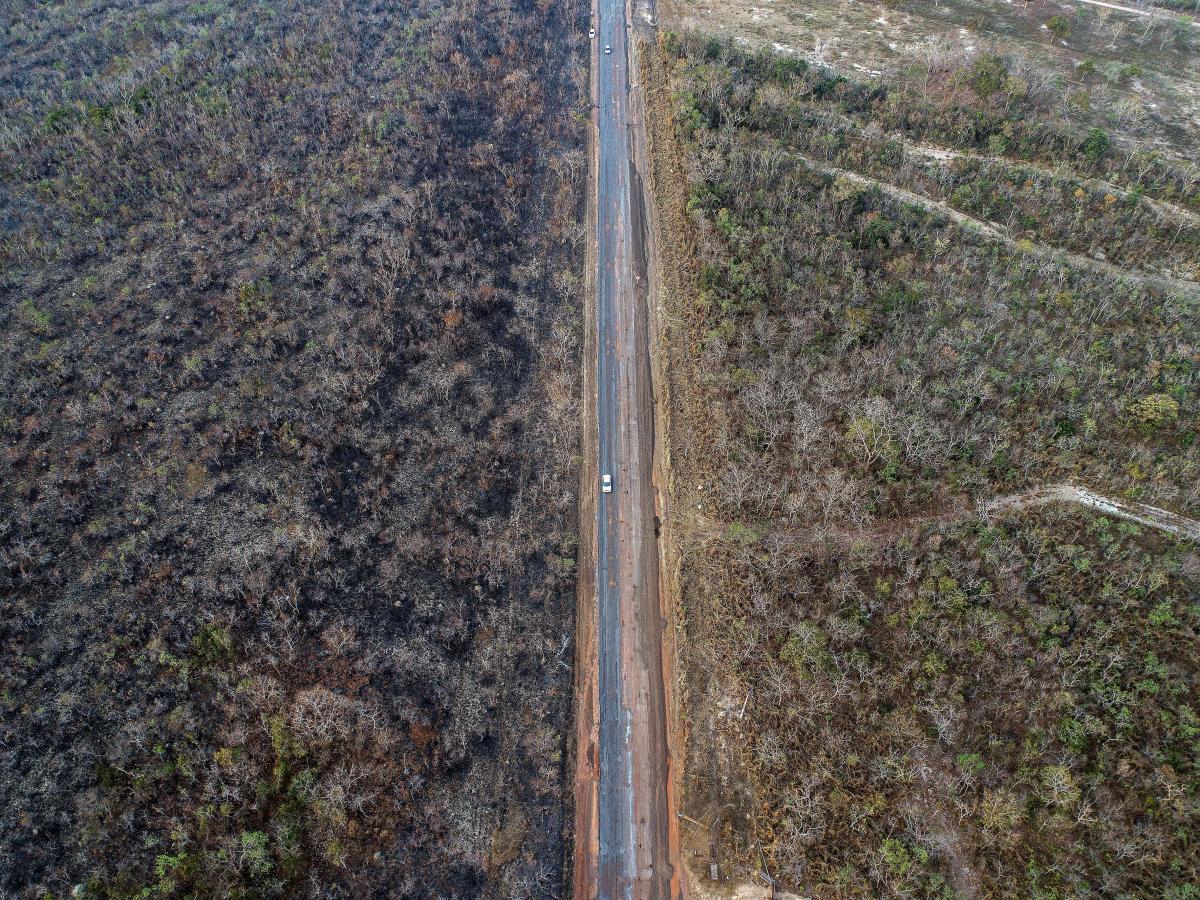La foto muestra un área afectada por los incendio en el estado de Mato Grosso (Brasil). La región amazónica brasileña sufre los peores incendios de los últimos años. EFE ROGERIO FLORENTINO