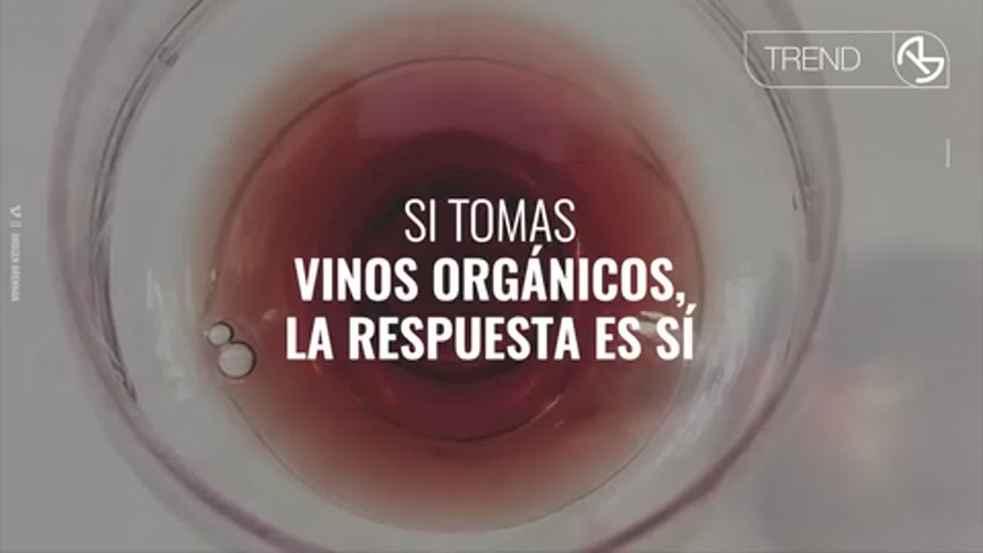 Video: Los vinos orgánicos o tomar vino para salvar la tierra