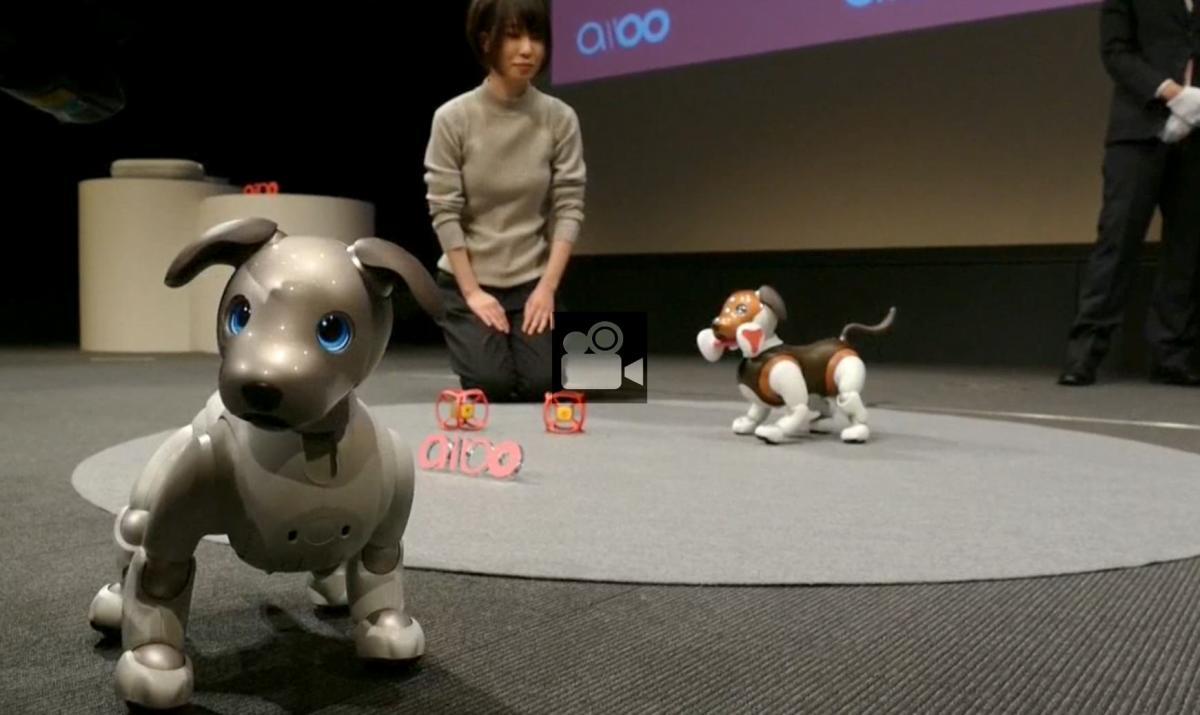 """Sony presenta una versión """"policía"""" de su perro-robot Aibo"""