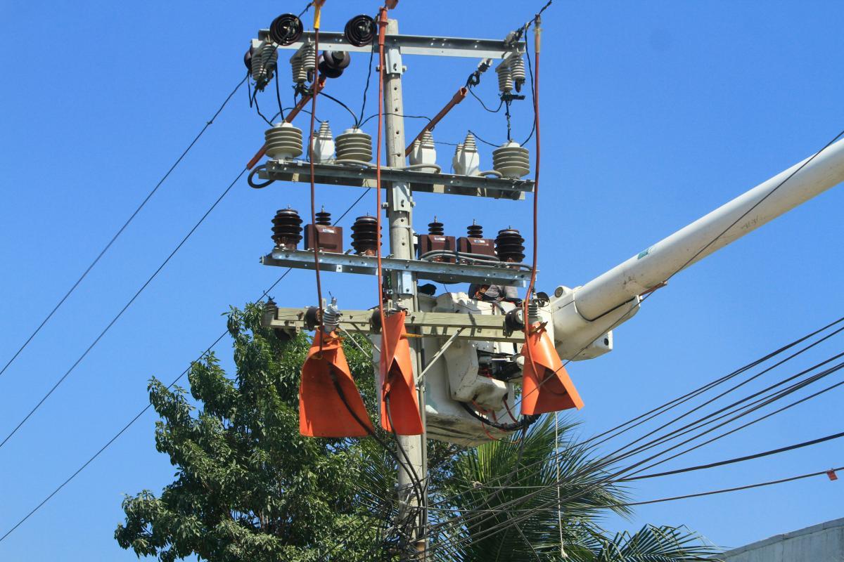 Trabajos de mantenimiento de las redes de energía en Cartagena. // Archivo.
