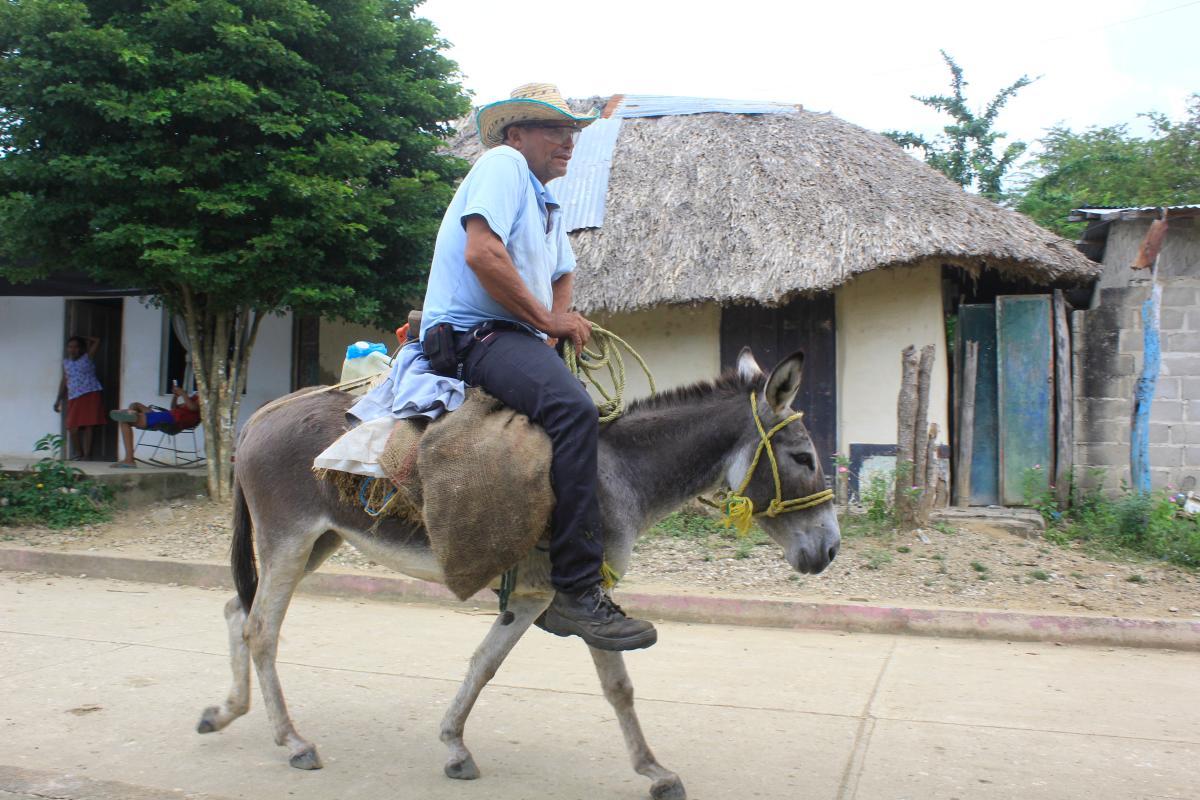 Hombre cabalga por una de las calles de San Pedro Consolado.