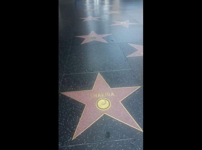 Estas son algunas de las estrellas en Hollywood.