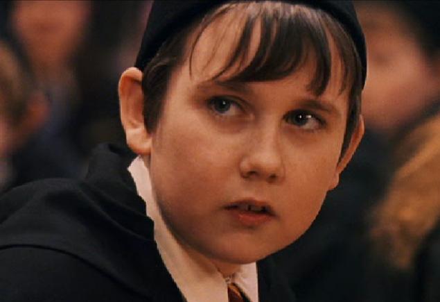 El protagonista de harry potter es homosexual