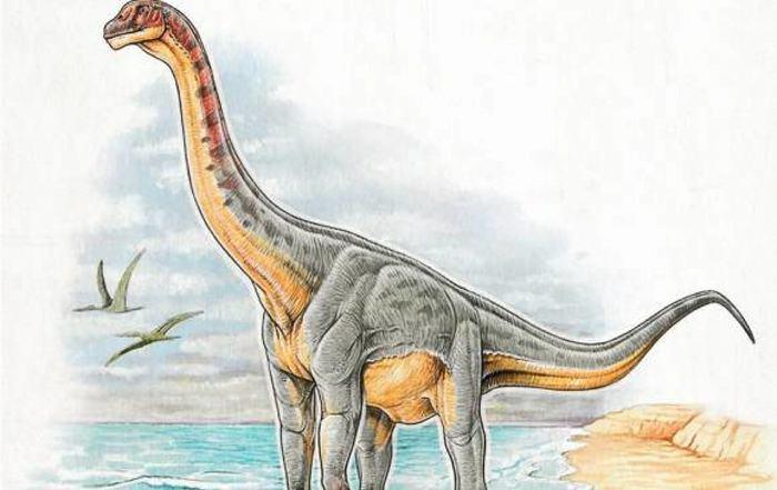 Colombia habría sido el hábitat del primer dinosaurio del norte de Suramérica