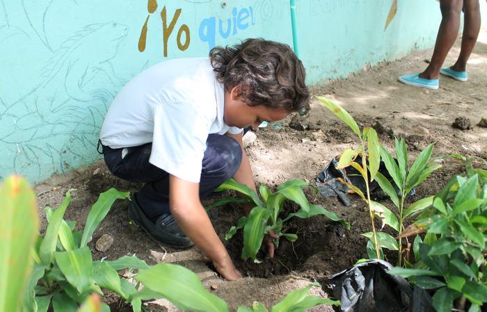 Cartagena no obtuvo calificación en el Índice de Calidad Ambiental Urbana