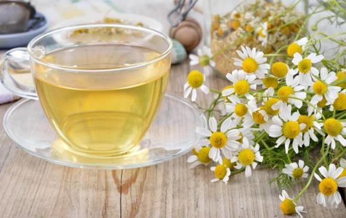 Conozca ocho usos de la manzanilla para la salud