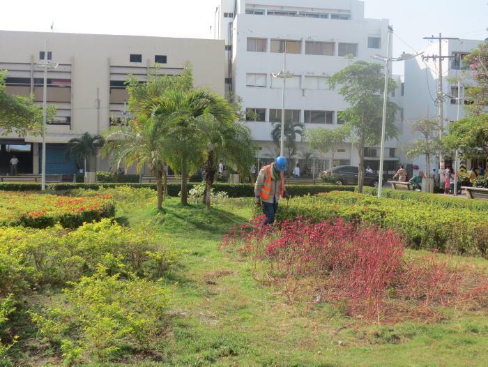 ¿En qué estado están las plazas y parques más importantes de Cartagena?