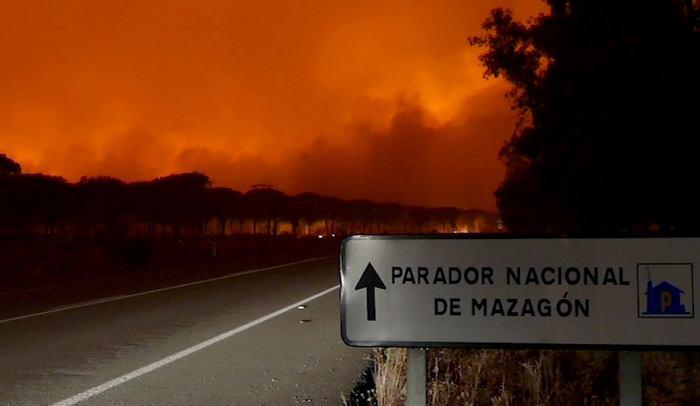 Más de 1.500 personas desalojadas al sur de España por incendio forestal