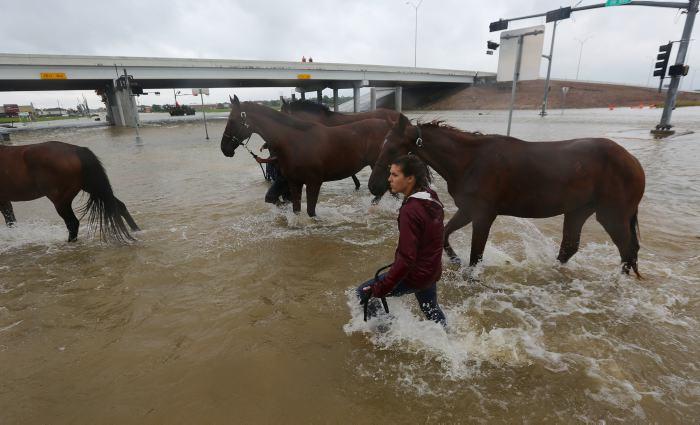 Tormenta tropical Harvey impactó el estado de Luisiana, EE. UU