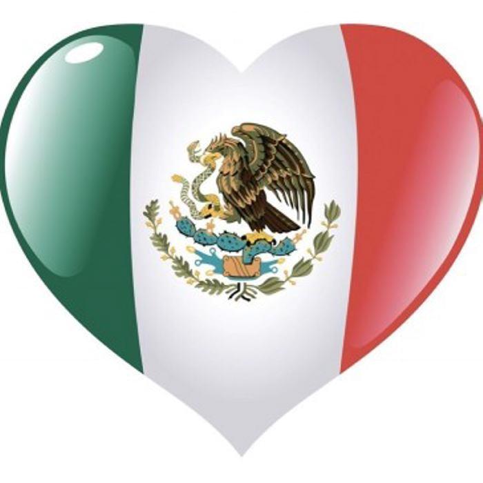 México: Gael García realizó una conmovedora petición por Twitter
