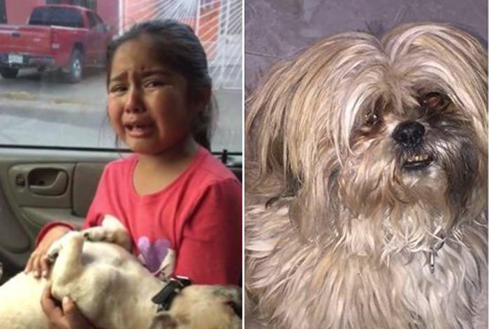 Niña llora sin consuelo porque a su perrito lo dejaron pelón