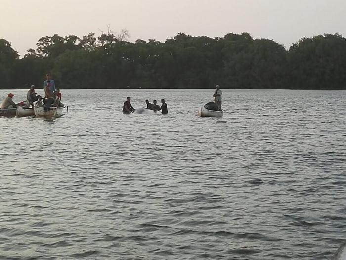 Armada auxilió a ballena encallada cerca de Cartagena