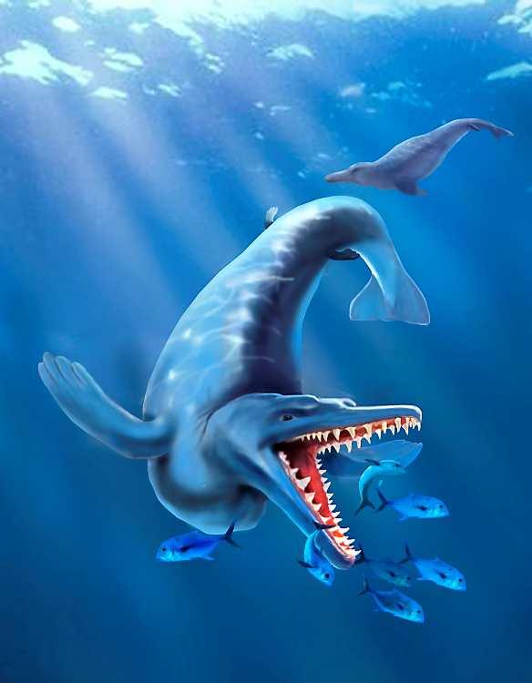 Resultado de imagen de ballena primitiva