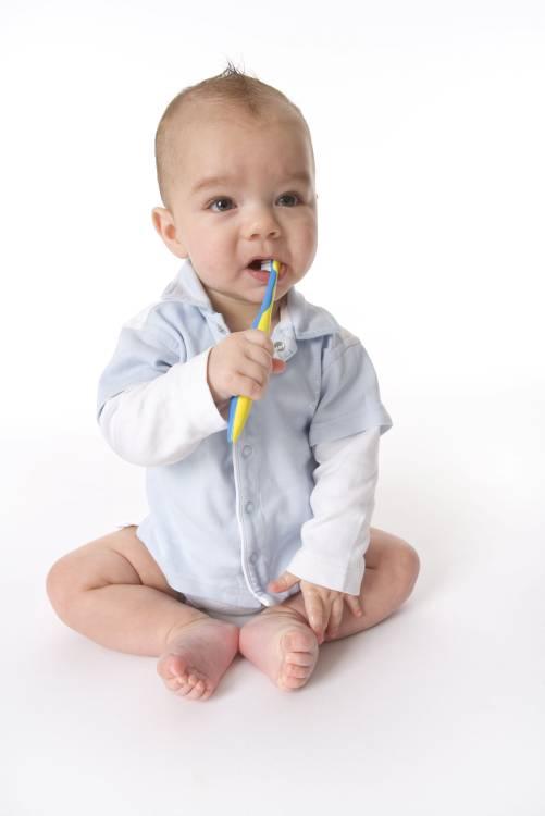 c1297e868 Desde los 3 meses se puede empezar a limpiar la lengua y las encías del  bebé.    123 ROYALTY FREE