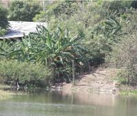 Lago en Henequén en el que se ahogó Deimar José Villera, quien tenía 17 años.