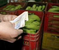 Compra de plátanos