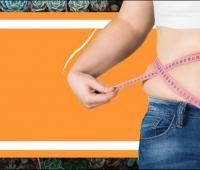Descubrieron que una proteína podría combatir la obesidad