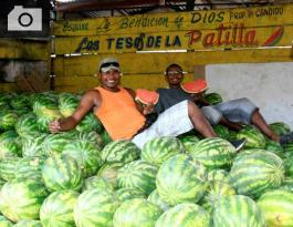 vendedores del mercado de  Bazurto.