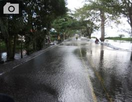 La Troncal de Occidente, a la altura del corregimiento de Gambote está inundada.