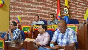 Alcaldes Locales