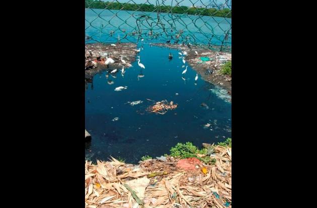 Los cuerpos de agua de Cartagena tiene desde contaminación orgánica hasta gran variedad de agentes químicos.