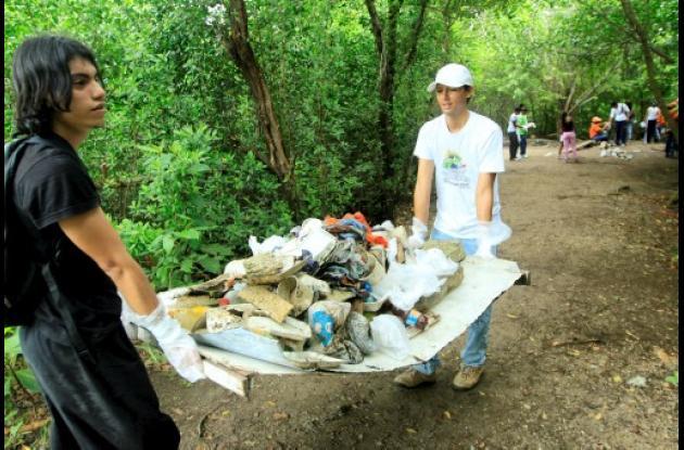 Limpieza a los mangles