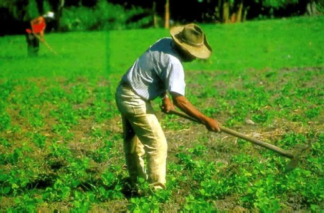 Desarrollo Rural con Equidad beneficiará a  pequeños y medianos productores