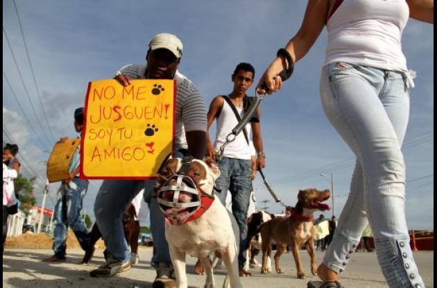 Marcha en defensa de los animales