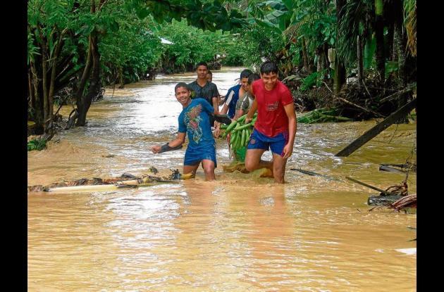 En Tierralta algunos campesinos que perdieron sus cultivos