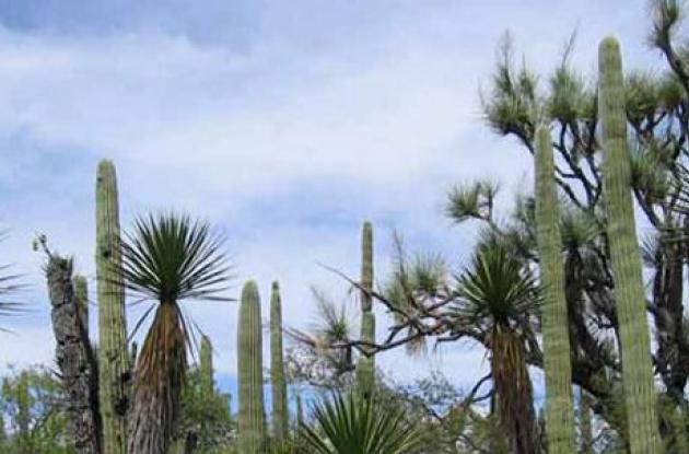 Red Mundial de Reservas de Biosfera