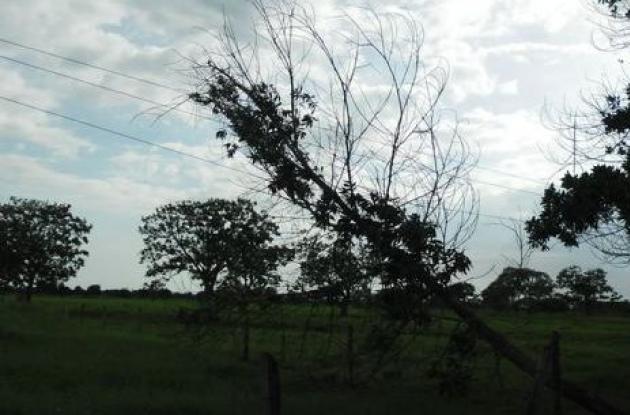 Cuatro municipios de Córdoba sin energía eléctrica por tormentas eléctricas.