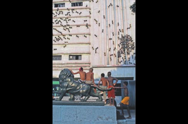 11a. Bienal de La Habana 2013.