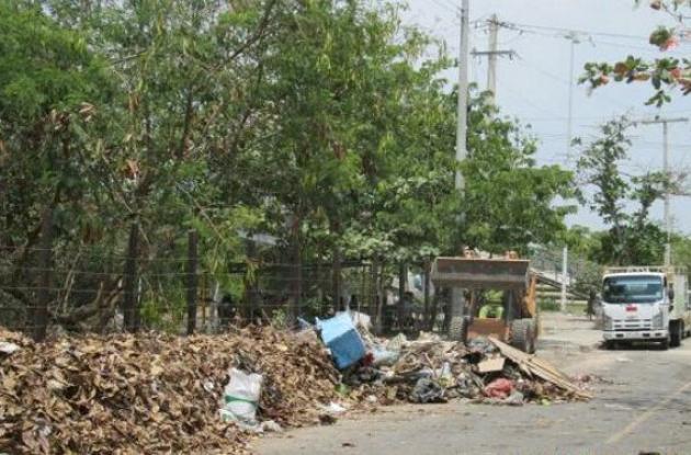 Pacaribe hace limpieza en la marginal del sur