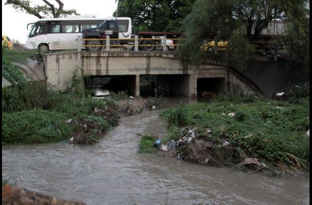 Canal de Ceballos, lleno de maleza y sedimentos.