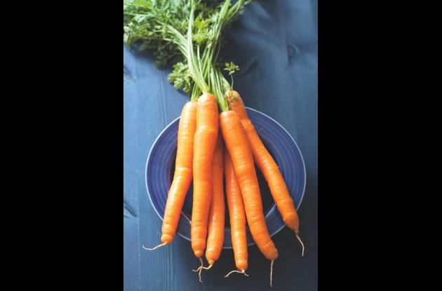 Zanahoria.