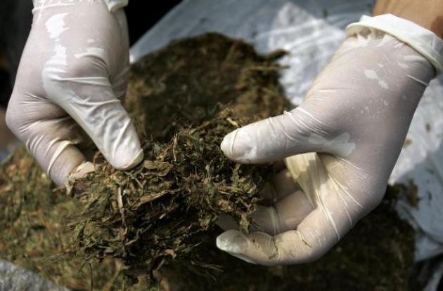 uso de la marihuana en Colombia