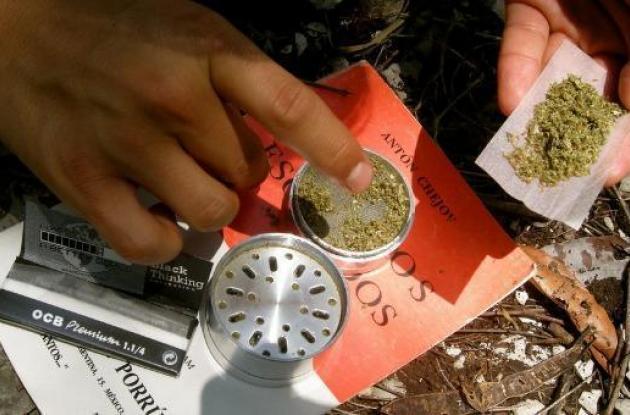 Marihuana en Mexico