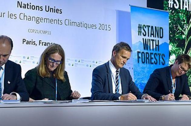 La COP21 busca fijar un nuevo objetivo de financiamiento antes de 2025 a partir del piso de 100.000 millones de dólares.