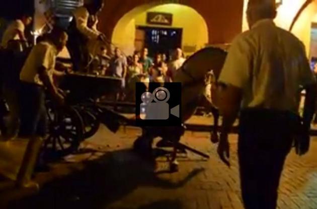 Se desploma caballo cochero en Cartagena