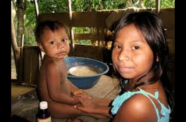 Icbf vigilará alimentación de niños indígenas.