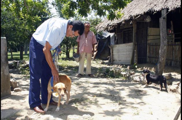 El coso municipal sería refugio para los animales maltratados y abandonados en Sincelejo.