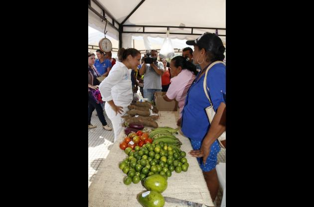En la Plaza Principal de El Carmen de Bolívar se desarrolló una Feria Agroalimentaria en donde las familias beneficiadas por el DPS vendieron los productos cosechados en sus tierras.